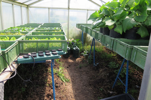 Greenhouses - Open Source Ecology
