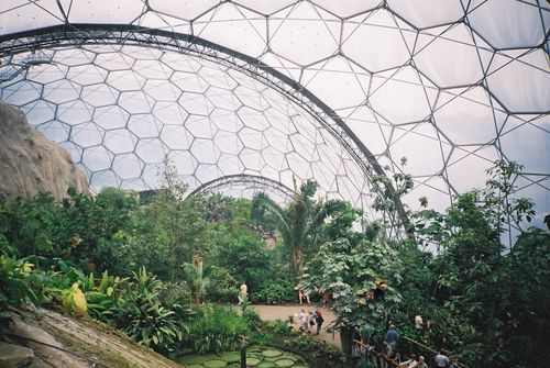 Tropical Greenhouse Open Source Ecology